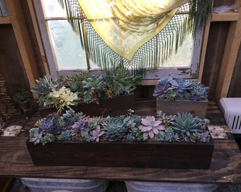 Rustic Succulent Centerpiece Arrangment Planter Box