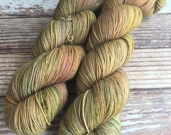 Isabel - On The Prairie  - Hand Dyed Yarn - 75/25 Superwash Merino/Nylon