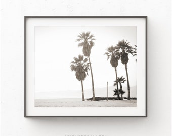 Palm Tree Print, Coastal Print, Beach Print, Printable Beach Art, South Beach Print, Black and White Palm Tree photography