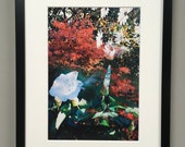 Autumn leaves- floral wal...