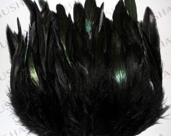 100 roosters feathers black 6 inch