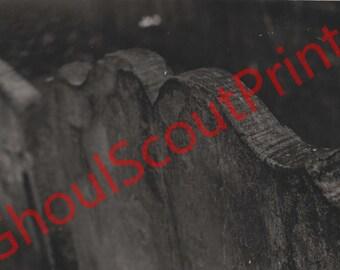 Forgotten Gravestones Original Photo Print