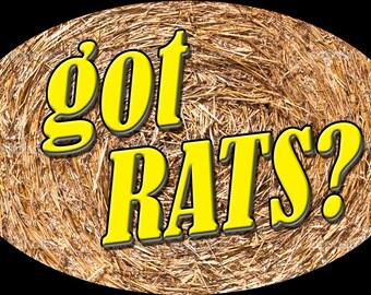Got Rats, Barn Hunt Magnet