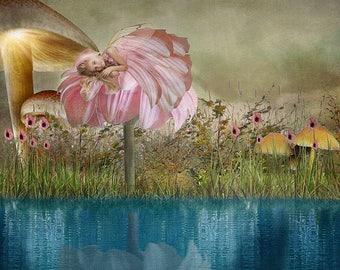 Fairy Digital Background
