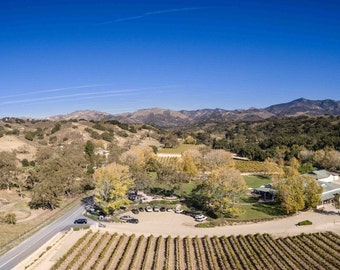 Wine County Vineyard in Los Olivos Panoramic Photo