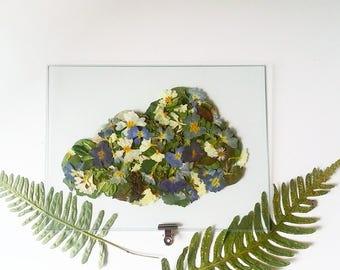 Cloud-shaped box Herbarium - pressed flowers