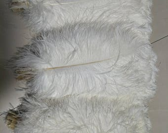 175PCS 14-16 inch white ostrich feathers - 300PCS 18-20 inch white ostrich feathers