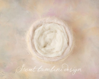 Newborn Photography Digital Backdrop Pastel Rainbow Nest - Instant Download