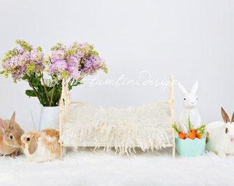 Easter Newborn Digital Background - Instant download