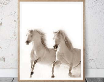 Horse Print, Horse Photography, Horse Printable Art, Horse Photo, Horse Decor, White Horse, Horse Art, White Horse Art, Horse Brown White