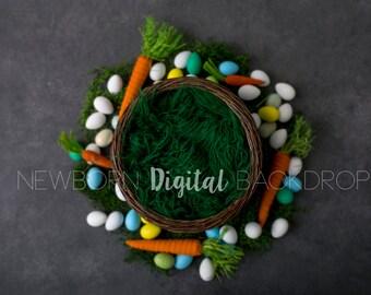 SAle* Easter Newborn Digital Backdrop Instant download