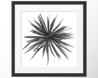 Black and White Photography, Printable Wall Art, Jukka, Botanical Photo, Botanical Digital Print,Botanical Art, Modern Wall Decor