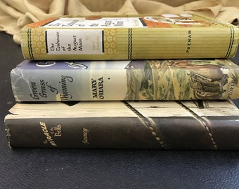 Decorative Stack of Vintage Novels