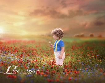 Digital Backdrop background  magic flower Field sky sunset meadow Digital Photography prop / 150