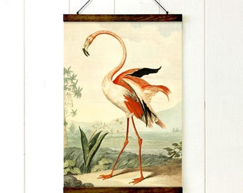 Paradise Flamingo Pull Down Chart, Flamingo, School chart, Educational Chart Diagram, Tropical Decor, Vintage Style, Tropical Style, 20x27