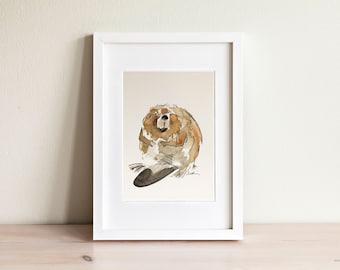 Illustration castor, Beaver Illustration / fait main, handmade