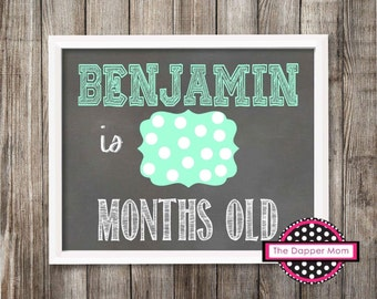Chalkboard Baby Photo Prop/Baby's First Year Monthly Update/Printal/Digital File