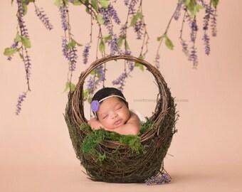 Newborn Digital Backdrop, Easter Digital Backdrop, Spring Digital Backdrop, Basket Digital Backdrop