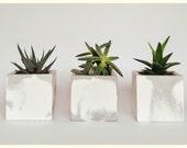 Concrete Planters/Cube Planters/Modern/ Concrete/Home Decor/Home Accents/Air Plant Holder/Succulent Planter/Cactus Planter/Wedding Favour