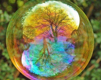 Emailed Gorgeous Scene - Forest Bubble Cross Stitch Chart