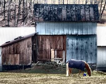 Barn Photography, Metal Barn Photography, Rustic Barn Photography, Barn Photograph, Barn Photo, Rustic Barn,Barn Picture, Rural Photograph