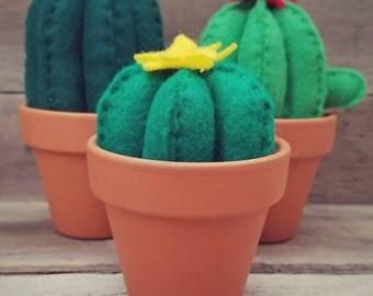 Set of 3 Felt Flowering Cactus | Cactus | Felt Cactus | Fake Succulent | Southwest Style | Home Decor | Nursery Decor