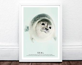 Seal Print, Sea Dog Print, Boys Room Wall Art, Kids Large Printable Poster, Arctic Decor, Arctic Animal, Learn Print, Baby Shower Print