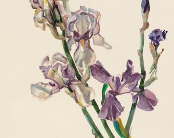 "Durdy Bayramov ""Untitled"" 2002 life-size print of lilies"