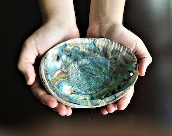 Natural Abalone Shell for Smudging and Burning Cleansing Herbs