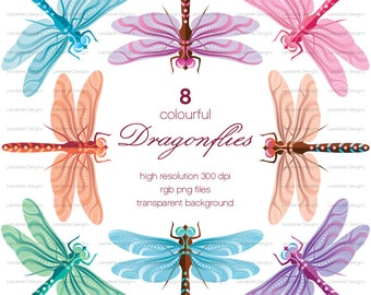 Colourful Dragonflies ~ clip art instant download