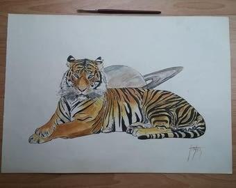 Tiger (Stardust)