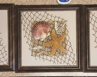 Seashell Wall Decor (3 frames )