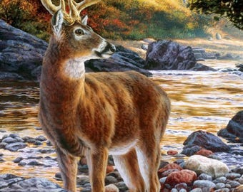 Shallow Deer Crossing Cross Stitch Pattern***LOOK***