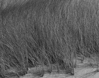 Coastal Geometry 3 - black and white, archival, museum quality, carbon inket, photograph