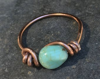 Blue Ring Brown Wire