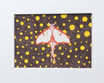 Luna Moth 8x10 Print