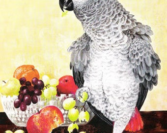 Touch of Red - Print of Original Oil Painting - Cheeky African Grey