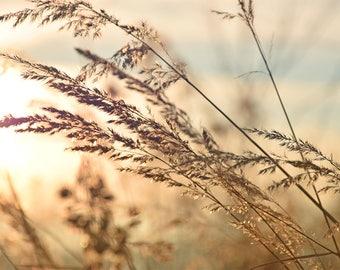 Sunset Nature Printable Digital Download Art Photograph Decor