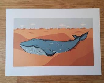 Illustration / blade / Print / art / blue whale / Blue whale