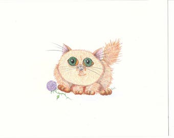 Chubby Big-Eyed Kitten with Flower