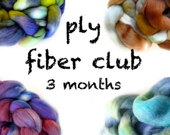 PLY fiber club / hand painted luxury wool roving for spinning or felting / customizable / 3 month membership / pancake and lulu fiber club
