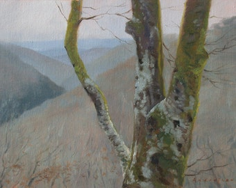 Teign Valley in the Mist, landscape oil painting, direct from artist