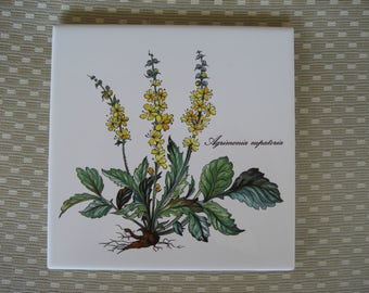 Villeroy & Boch tile Agrimonia eupatoria flower 6 X 6 inches made in France botanical trivet