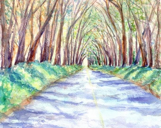 kauai tree tunnel 8x10 prints hawaiian paintings tunnel of trees original watercolor kauai artist kauaiartist giclee print maluhia road