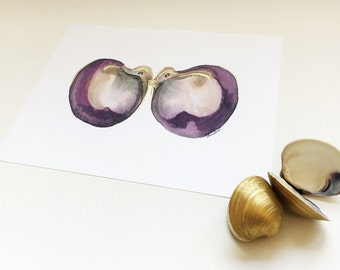 SALE!!! Topsail Clam Shell Watercolor Print with Gold