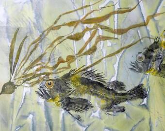 Notecard (5 x 7) - China Rockfish with kelp