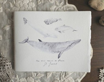 Our friends the whales // Cotton paper notebook