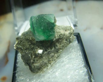 Namibia Green Fluorite crystal cube specimen - perky box mineral mount - cube formations - coyoterainbow display box Erongo Karibib A1QR