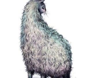 The Fantastic Bunny Llama 4x6 art print