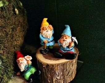 Flower Garden gnome-Resin gnome-fairy garden decor-Terrarium supplies